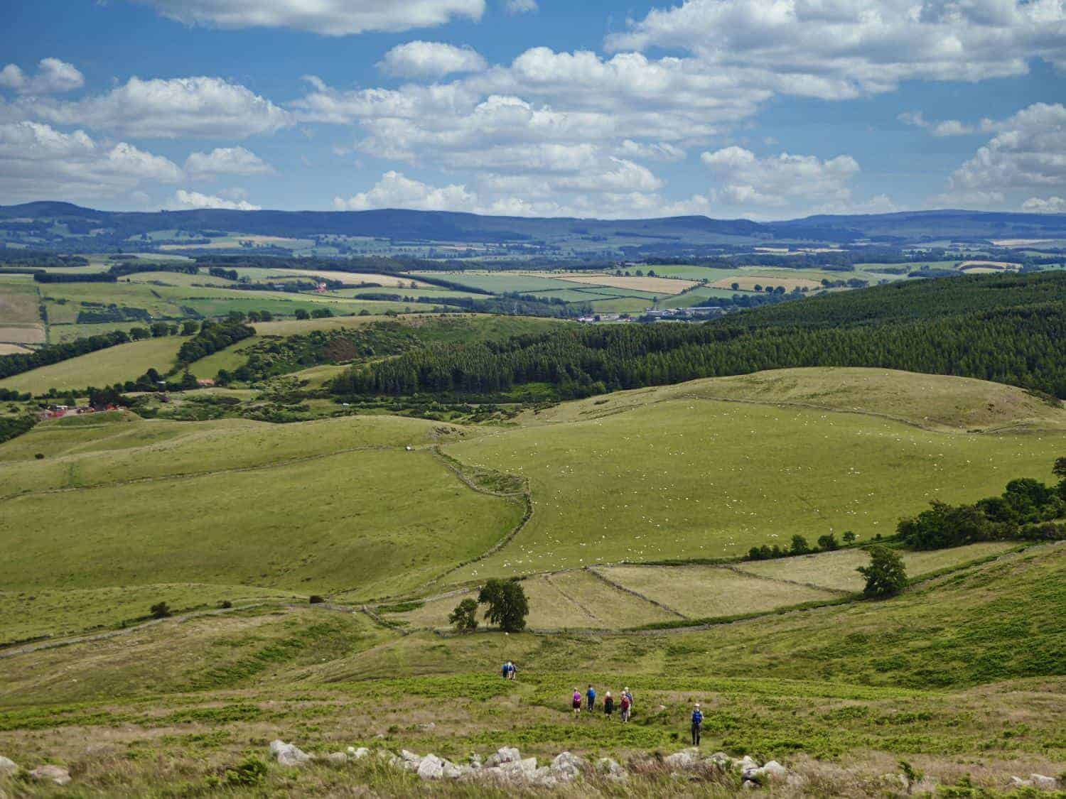 All Paths Lead to Wooler
