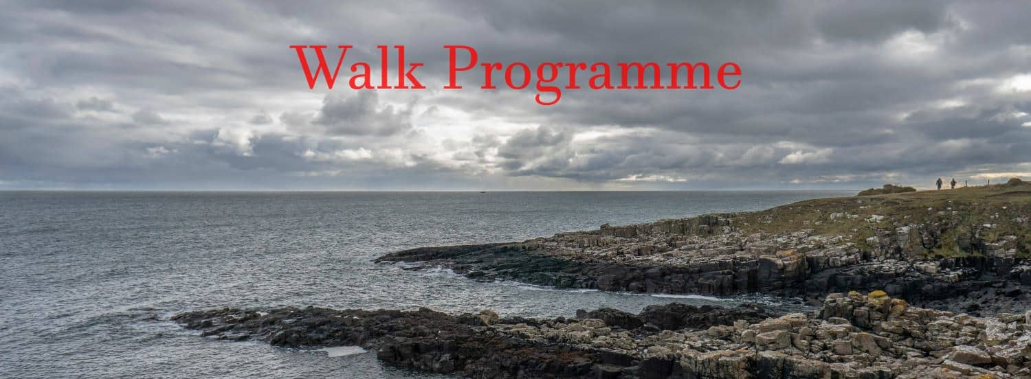 image for walk programme page